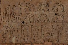 Egyptische Acrobaten Royalty-vrije Stock Foto's