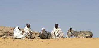 Egyptische Cameldrivers 2 Stock Afbeeldingen