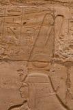 Egyptische hiërogliefen Royalty-vrije Stock Fotografie