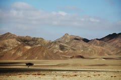 Egyptische landschappen Royalty-vrije Stock Foto