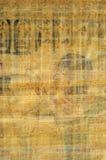 Egyptische papyrustextuur Stock Foto