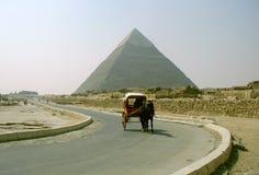 Egyptische Piramide Giza stock afbeeldingen