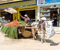 Egyptische plantaardige verkoper Stock Foto's