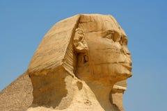 Egyptische sfinx Royalty-vrije Stock Foto's