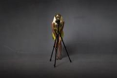 Egyptische sphynx die beeld met driepoot nemen Royalty-vrije Stock Foto
