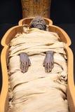 egyptisk mamma Fotografering för Bildbyråer