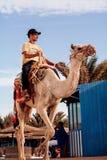 Egyptisk man på en kamelritt Royaltyfri Foto