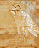 egyptisk owl royaltyfria bilder