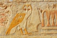 egyptisk owl Arkivbild