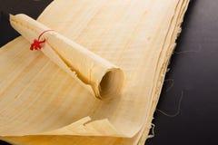 Egyptisk papyrus Fotografering för Bildbyråer