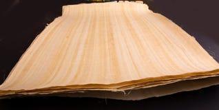 Egyptisk papyrusrulle Fotografering för Bildbyråer