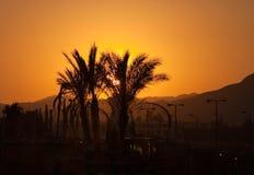 Egyptisk solnedgång Royaltyfria Foton