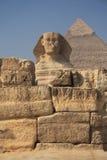 egyptisk sphinx Arkivfoton