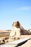 egyptisk sphinx Royaltyfri Fotografi