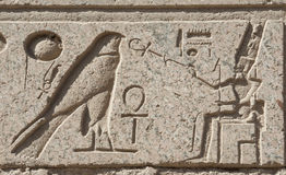 Egyptiska hieroglyphic carvings på väggen royaltyfri bild