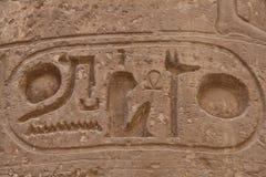 egyptiska hieroglyphics Royaltyfri Bild