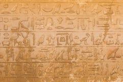 Egyptiska hieroglyphics från saqqarah, cairo Royaltyfri Fotografi