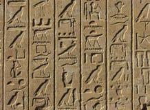 egyptiska hieroglyphs Arkivbilder