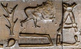 egyptiska hieroglyphs Royaltyfri Foto