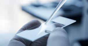 Egzamininować próbna próbka pod mikroskopem w laboratorium zbiory