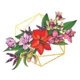Egzotów kwiaty i poligonalny element ilustracja wektor