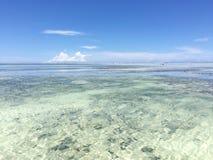 Egzot plaża na oceanie indyjskim zanzibar zdjęcie royalty free