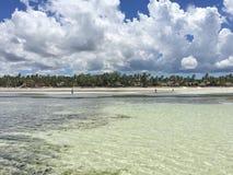 Egzot plaża na oceanie indyjskim zanzibar zdjęcia royalty free