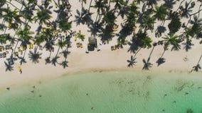 Egzot pla?a z palmami woko?o Wakacje i wakacje poj?cie tropikalna wyspa zbiory wideo