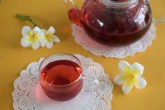 Egzotyczna kwiat herbata w z szklanym teapot obraz stock