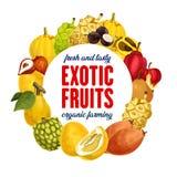 Egzotyczna owoc ikona dla sklepu spożywczego sklepu lub gospodarstwo rolne rynku ilustracja wektor