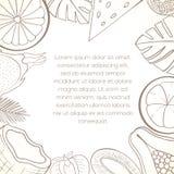 Egzotyczna owocowa zaproszenie karta Obraz Stock
