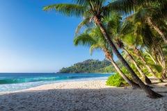 Egzotyczna tropikalna plaża z palmami i błękitny morze przy zmierzchem obrazy stock