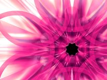 egzotyczne 9 kwiat Zdjęcia Stock