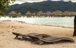 egzotyczne na plaży Fotografia Royalty Free