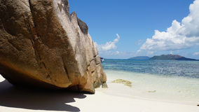egzotyczne na plaży Obrazy Stock