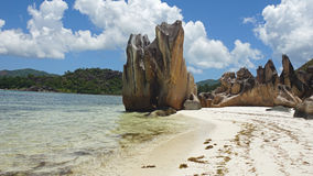 egzotyczne na plaży Zdjęcie Royalty Free