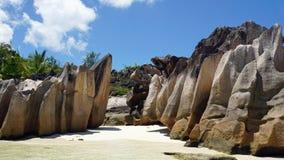 egzotyczne na plaży Zdjęcie Stock