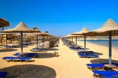 egzotyczne na plaży Fotografia Stock