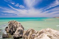 egzotyczne na plaży Zdjęcia Royalty Free