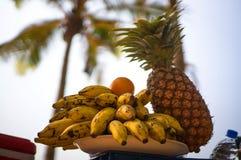 Egzotyczne owoc na tle drzewka palmowe i brzeg Pinkin w tropikalnym kraju na plaży indu Zdjęcia Stock