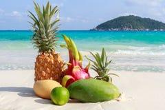 Egzotyczne tropikalne owoc na piaskowatej plaży wyspy similan Obraz Royalty Free