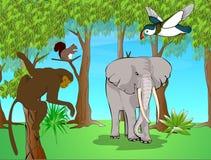 egzotyczne zwierzęta Zdjęcie Royalty Free
