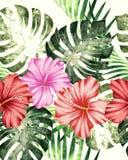 Egzotycznej tropikalnej kwiecistej akwareli bezszwowy tło royalty ilustracja