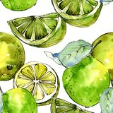 Egzotyczni cytryna cytrusy w akwarela stylu wzorze ilustracji