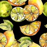 Egzotyczni cytryna cytrusy w akwarela stylu wzorze royalty ilustracja