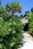 egzotyczni hotelowi Maldives Zdjęcie Stock