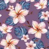 Egzotyczni plumeria kwiaty i zielony monstera opuszczają na purpurowym tle w bezszwowym tropikalnym wzorze adobe korekcj wysokieg royalty ilustracja