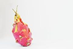 Egzotyczny owocowy pitaya lub pitahaya, smoka Hylocereus owocowy undatu Obraz Royalty Free