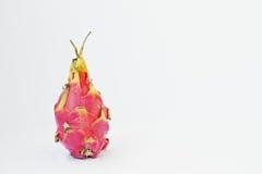 Egzotyczny owocowy pitaya lub pitahaya, smoka Hylocereus owocowy undatu Zdjęcia Royalty Free