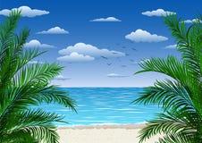 Egzotyczny tropikalny krajobraz z palmami Drzewka palmowe przy zmierzchem lub blask ksi??yca seascape Turystyka i podr??owanie zdjęcia royalty free